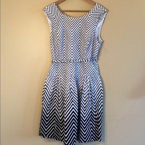 NWOT Amanda Lane White & Black A-Line Dress Sz14